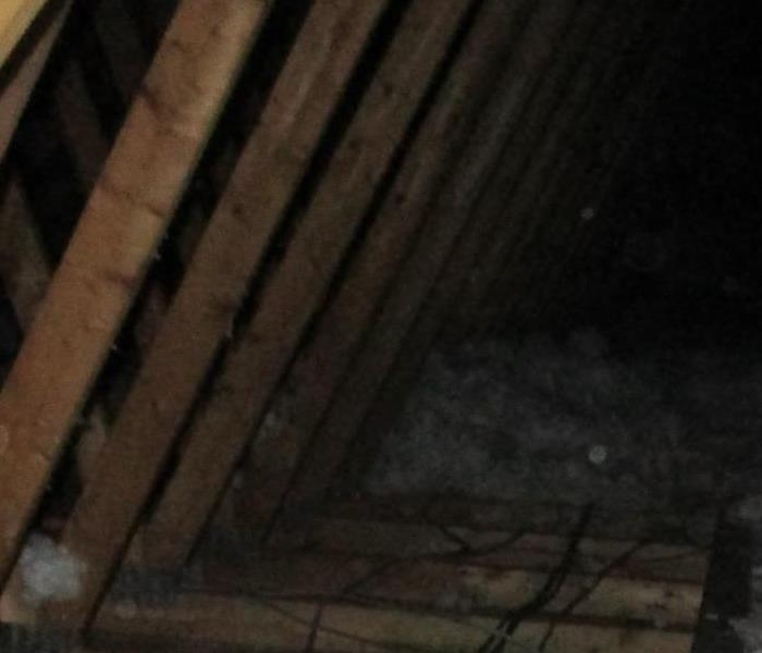 Wet insulation in attic.