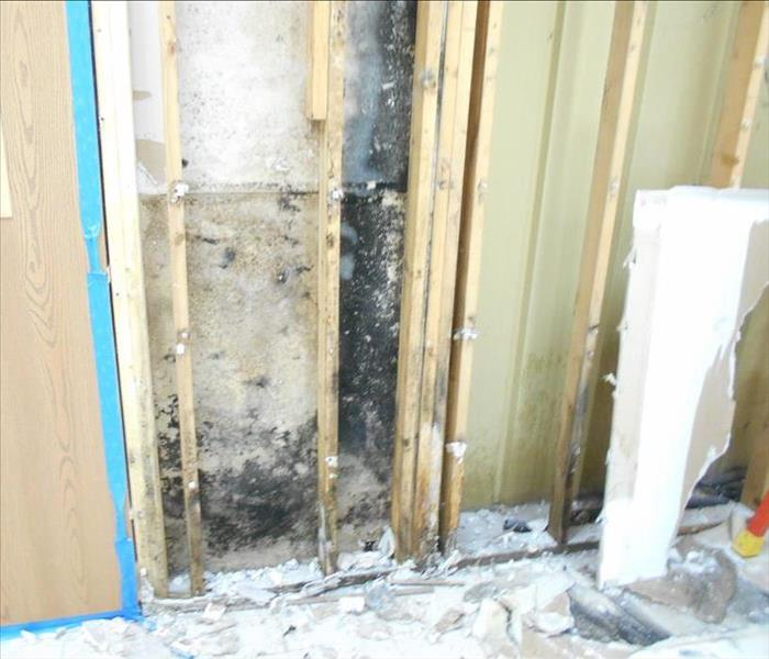 Mold Remediation in a Morgantown Office Building