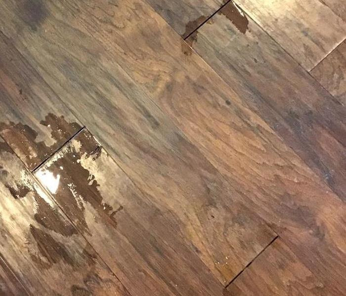Water Damaged Floor